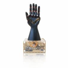 BrainCo STEM Kit